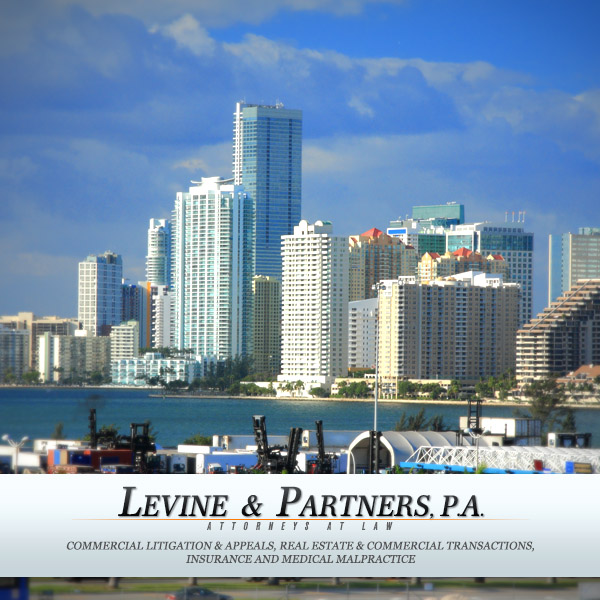 Levine Law Firm Logo